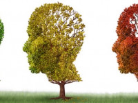 Functional Medicine Approach to Dementia and Alzheimer's Disease
