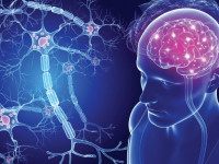 High dose of Omega 3 and Vitamin D3 affects clinical symptoms of Multiple sclerosis